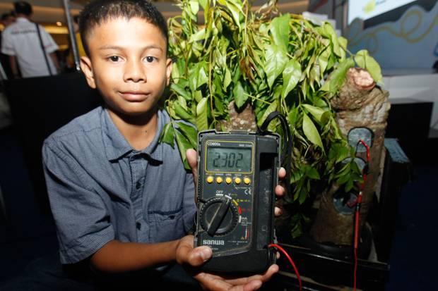 สุดเจ่ง! เด็กหนุ่มอาเจะห์  ผลิตไฟฟ้าจากต้นมะกอกฝรั่ง จนมีคนแย่งขอตัว